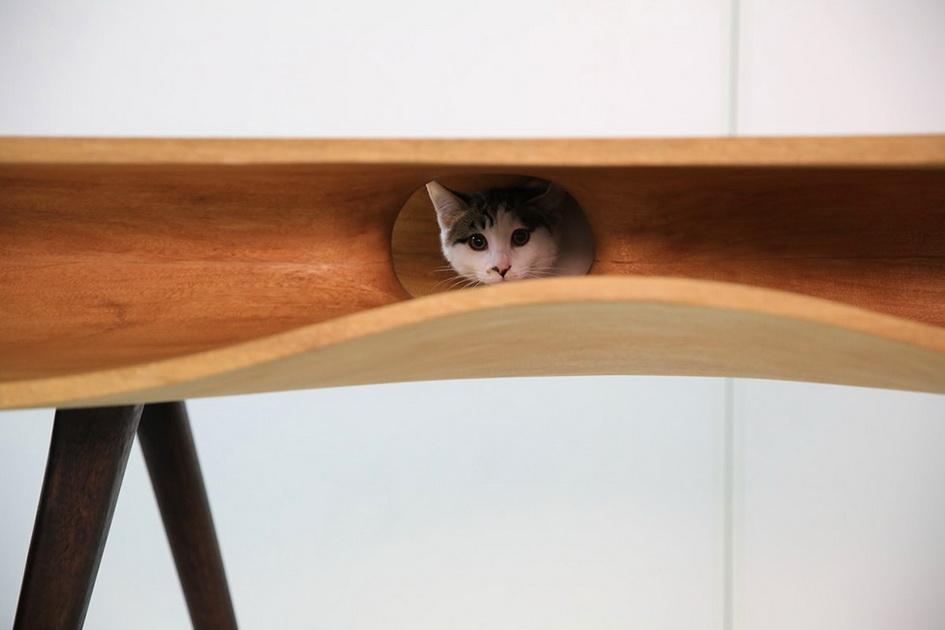 Дизайн стола CaTable разработан на основе опыта общения с котом