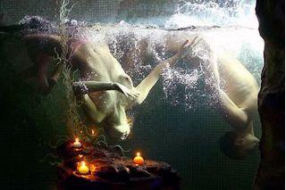 Невероятное про аквариумы! А вы знали что!....?